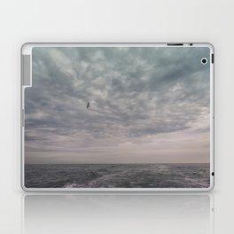 Flying seagull Laptop & iPad Skin
