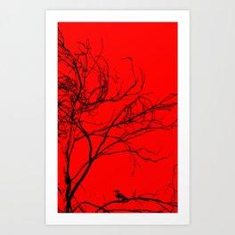 Bird Obscure Art Print