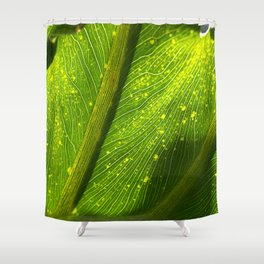 Spotted Leaf Shower Curtain