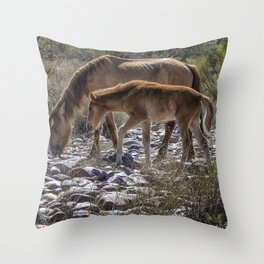 Salt River Mare and Her Colt, No. 2 Throw Pillow