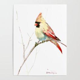 Northern Cardinal (female Cardinal bird) Poster