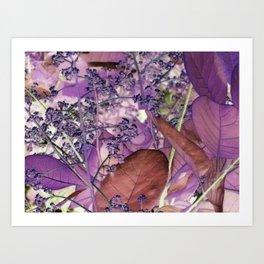 Spring 7 Art Print