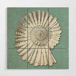 FOSSIL Wood Wall Art