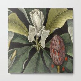 Tropical Umbrella Tree Metal Print