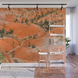 Bryce Canyon Hoodoos landscape on Queens Garden Trail Wall Mural