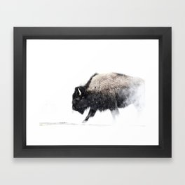 Prancing Buffalo Framed Art Print