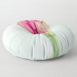 Lovely Amaryllis Peeking Through Floor Pillow
