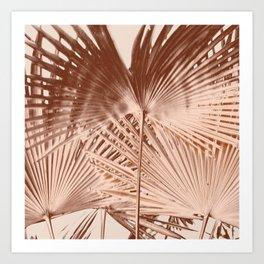 Arecales Palmae Copper Cocos Art Print