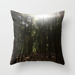 Magic Hour. Rushmere Country Park, Bedfordshire UK Throw Pillow