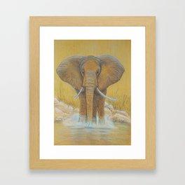 Elephant in Water Framed Art Print