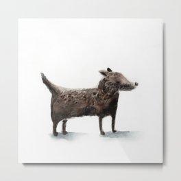 Little black dog Metal Print