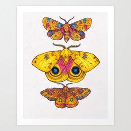 Multiple Moths Art Print