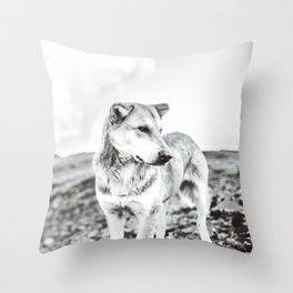Wise dog Throw Pillow