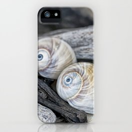 Shark's eye shells and driftwood iPhone Case