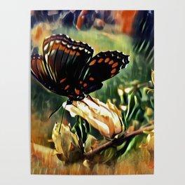 Butterfly Summer Poster