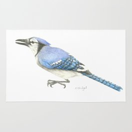 Blue Jay Study in Colored Pencils Rug