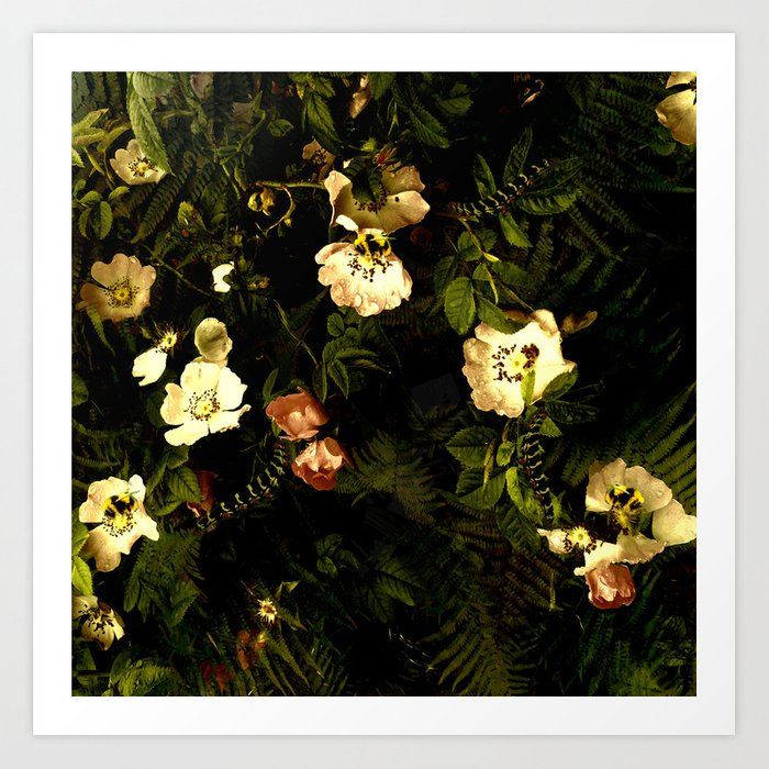 Floral Night III Art Print