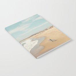 California Beach Notebook