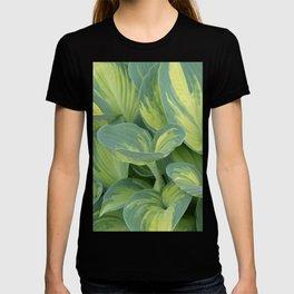 Showy Perennial T-shirt