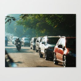 Showering in Sunlight Canvas Print