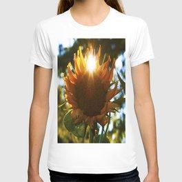 """""""SUN"""" flower T-shirt"""