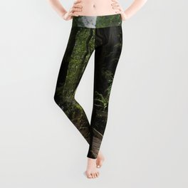 Redwood Roaming - California Wanderlust Leggings