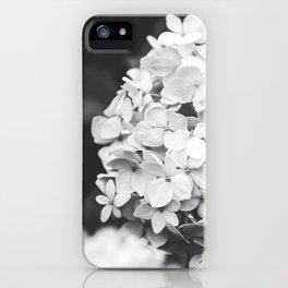 Launceston iPhone Case