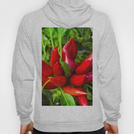 Red Chili Peppers Hoody