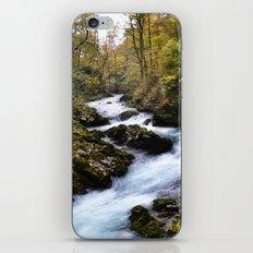 River in Bled, Slovenia. iPhone Skin