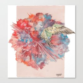 A Parakeet Breaks Through the Barrier Canvas Print