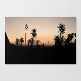 Silhouettes of Sunset Canvas Print