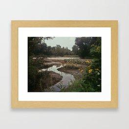 Aquatic Meloncholy Framed Art Print