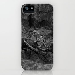 Young Bucks iPhone Case
