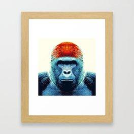 Gorilla -  Colorful Animals Framed Art Print