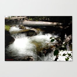 Cascades on Fall Creek in the Weminuche Wilderness, No. 1 of 2 Canvas Print