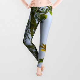 Birds from Pantanal Periquito-de-encontro-amarelo Leggings