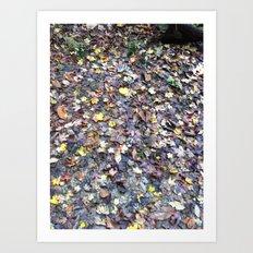 Hoosier National Forest - Leafy Ground Art Print