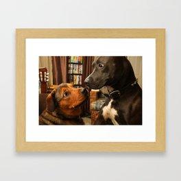Lola and Boogy  Framed Art Print