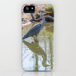 Gray heron reflected in the water of the pond iPhone Case