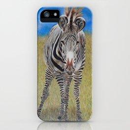 Don't Walk, Walk! - Grevy's Zebra iPhone Case