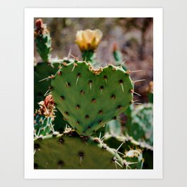 Sonoran Love Art Print