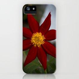Dália iPhone Case