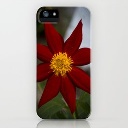 Dália iPhone Case