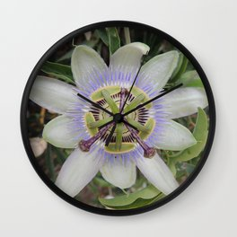 Passion Flower Blossom Wall Clock