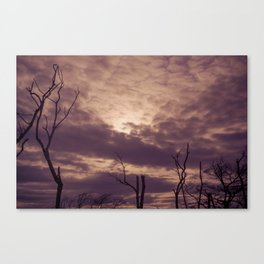 Burn... Canvas Print