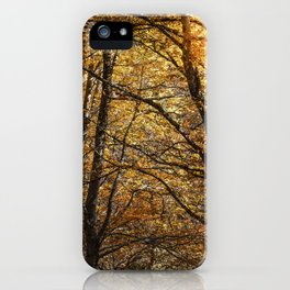 Forest in Autumn time iPhone Case
