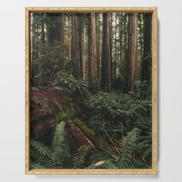 Redwood Forest Floor Serving Tray