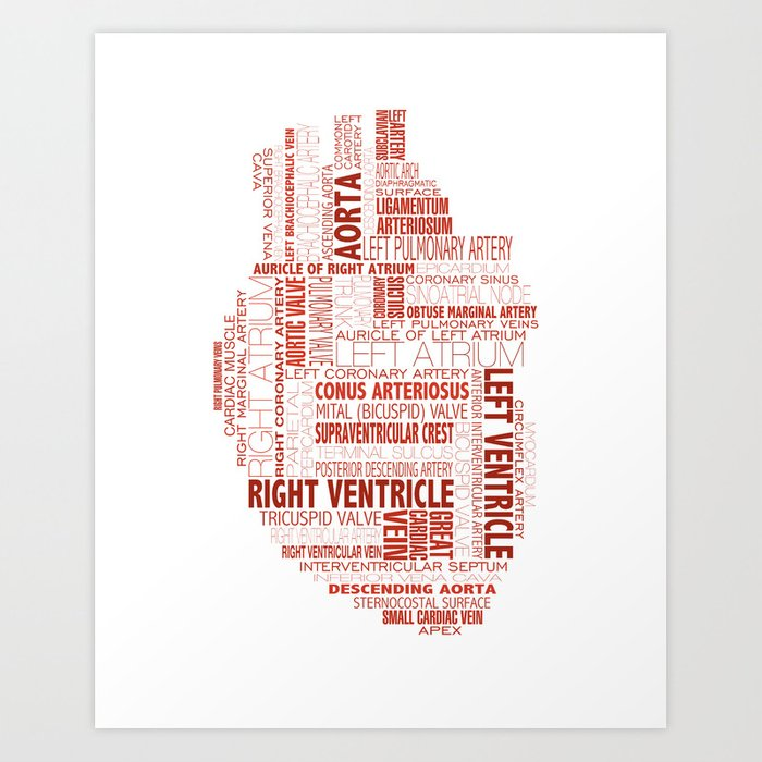 Anatomical Heart Typography Art Print By Urbanfootprintdesign Society6