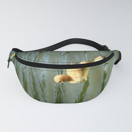 Follow Me II - Colorful Fanny Pack