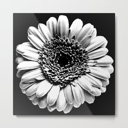 Chalk and charcoal flower Metal Print